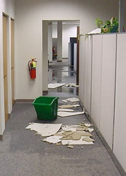 commercial flood office
